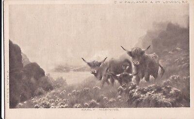 b animals pet animal old picture postcard cattle cow farming agriculture