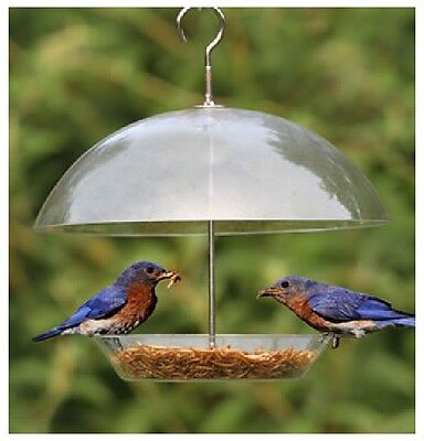 Clear Dome Garden Small Birds Seed Feeder Adjustable Keeps Big Birds Out BFDOME