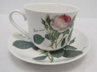 Roy Kirkham Redoute Roses Cup And Saucer Set - BRI P38