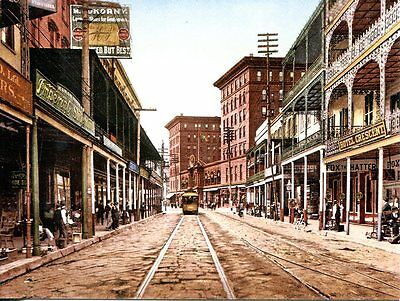 Post Card Reproduction Of A Vintage Postcard St. Charles Street New Orleans 1900