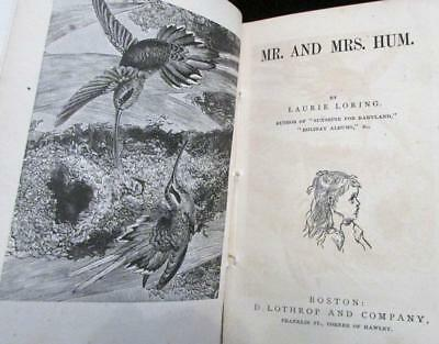 Antique 1878 Childrens Book MR. and MRS. HUM and Other Stories Lothrop  Illus.