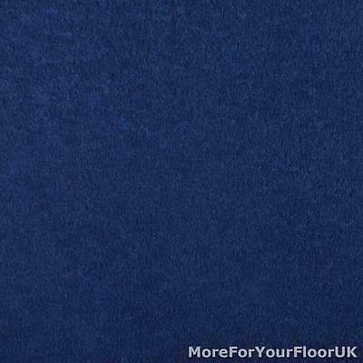 Navy Oxford Quality Twist Carpet Cheap Stain Resistant Felt Backing 4m & 5m