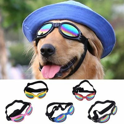 Pet Dog Sunglasses Foldable Goggles For Puppies Outdoor Fashionable Eye Wear