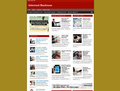 Internet Business Help Website & Uk Affiliate Store - Basic Theme - Free Hosting