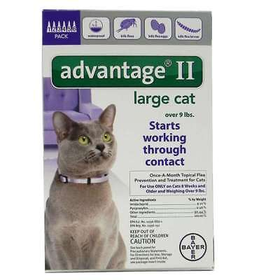 Bayer Advantage II for Large Cats Over 9 lbs 6 Pack - NEW