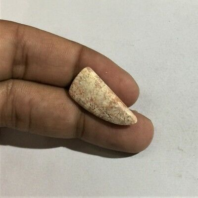 8.2 Cts 100% Natural Pink Fossil Coral Cab AAA+ Quality Loose Gemstone L#946-59
