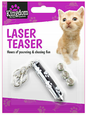 Pet Laser Pen Kitten Play Cat Dog Keychain Teaser Toy Pointer Red Exercise Fun