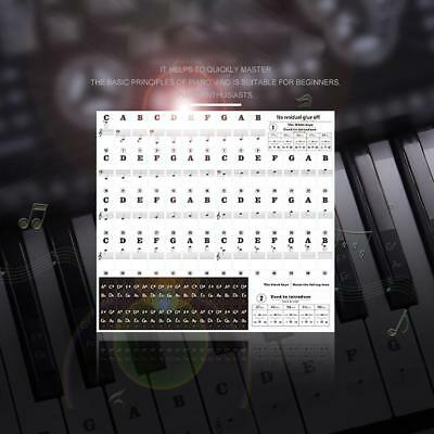 Transparent 54 / 61 / 88 Keys Electronic Keyboard Stickers Piano Stave Note