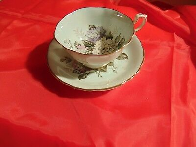 Paragon Pink Purple White Hydrangea Blue Floral Tea Cup And Saucer