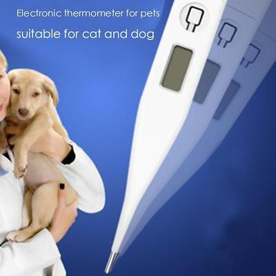 1X White Pet Animal Cold Fever Digital Thermometer For Dog Horse Cat Veterinary