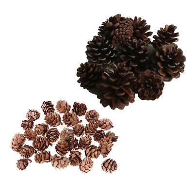 40pcs Mini Natural Dried Pine Cones for Xmas Tree Hanging Decors