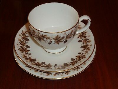 Wedgwood Trio Cup Saucer Side Plate AUTUMN VINE Brown And White