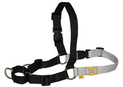 Comfort Walk Chest Dog Harness Adjustable for Easy Fit by CuteNfuzzy