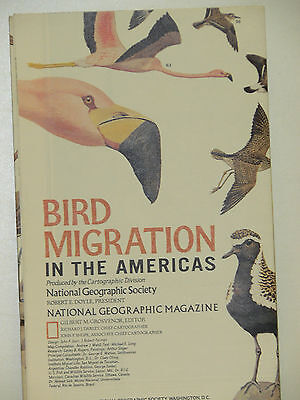Vintage 1979 National Geographic Poster Bird Migration in the Americas