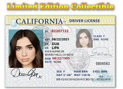 DUA LIPA Superstar Limited Edition Collectible License
