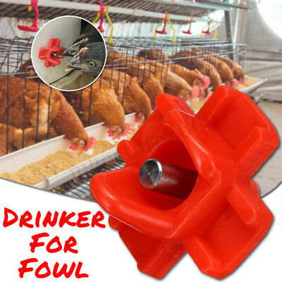 Poultry Water Drinking Cups Plastic Poultry Chicken Hen Bird Automatic