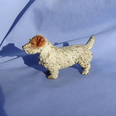 bronze SEALYHAM CESKY terrier Vienna Austria dog 4""