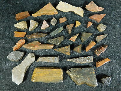 BIG Lot of Small Dinosaur Gem Bone Cabochon Pre-Forms or Slabs For Inlay 80.8gr