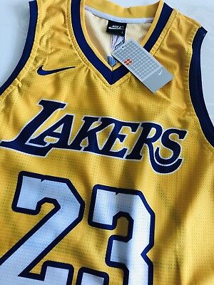 NEW 2019 LeBron James LA LAKERS Basketball Jersey NBA Purple White Black  Gold bab60d2e7