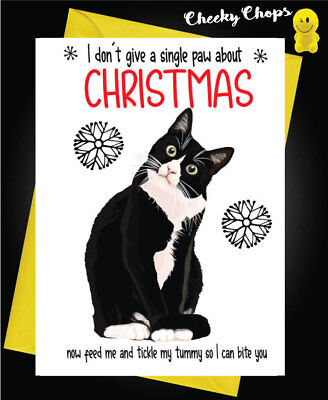 Funny Birthday Card from Cat Folded Greeting Card with Envelope Blank Inside Its Your Birthday Now Feed Me and Tickle My Tummy
