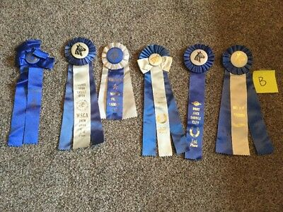 Lot of 6 Vintage Horse Show Ribbons ALL BLUE- Birthday Party pack-LOT B