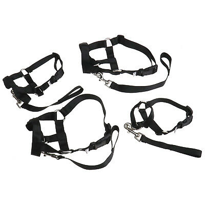 Smlxl Puppy Halter Harness Stop Dog Pulling Walk Easy Lead Pets