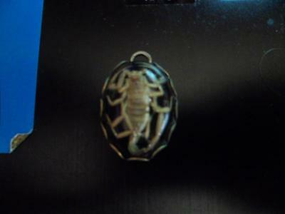 Vintage Real Young Scorpion in Goldtone Black Drop Resin Pendant