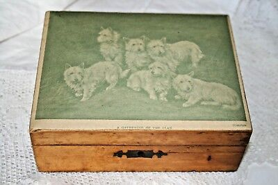 Antique Vintage Mauchline Ware Treen Wood Box Terrier Dogs Dog Wooden Old