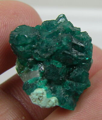 #2 18.75ct Congo Natural Raw Green Dioptase Crystal Cluster Specimen 3.75g 17mm