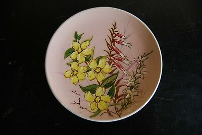 Vintage Guy Boyd Signed Collectors Flora Australian Pottery Hand Painted Plate