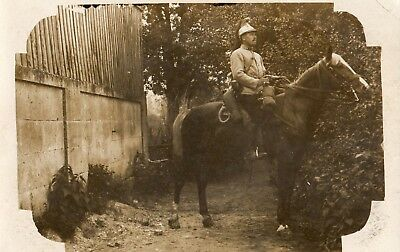 Carte photo - cavalier du 1er Dragons secteur 87 - 1915 - Guerre 1914 1918