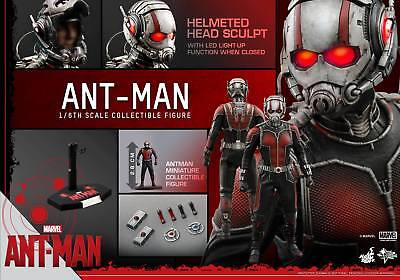 "Clearance! Hot Toys 1/6 Marvel Ant-Man MMS308 Scott Lang 12"" Action Figure"