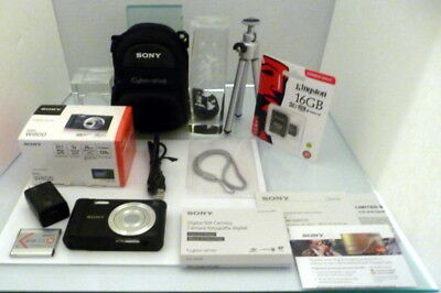 Sony Cyber-Shot DSC-W800 20.1MP Digital Camera Black with Great Amenities LQQK!