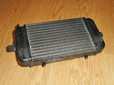 Bmw C1 125/200 Oem Genuine Water Cooled Radiator Rad 2000/2001/2002 (#2)