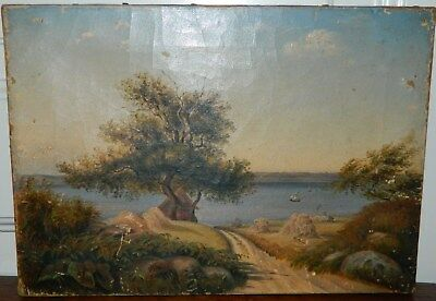 Origina old antique oil painting on canvas motif from Denmark  c. 1860-80