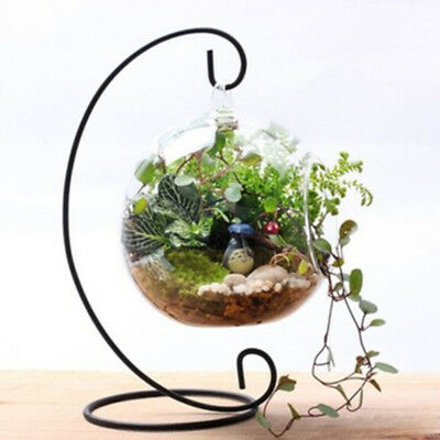 Hanging Glass Flowers Plant Vase Stand Holder Iron Container Fish Pot Supports