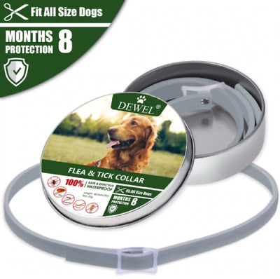 Flea and Tick Collar for Large Dogs Waterproof 8Months Protection
