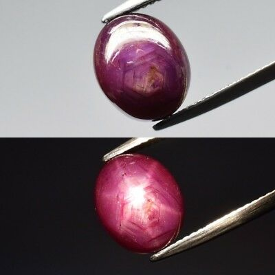 6.83ct 11x9mm Oval Cabochon Natural Red Two Side 6 Ray Star Ruby, Madagascar