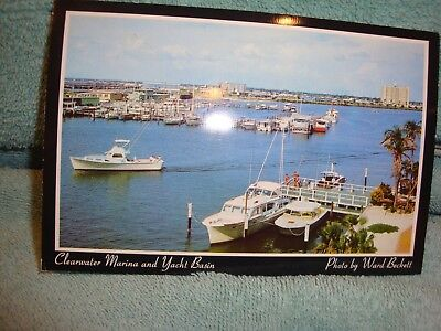 Clearwater Marina and Yacht Basin Postcard