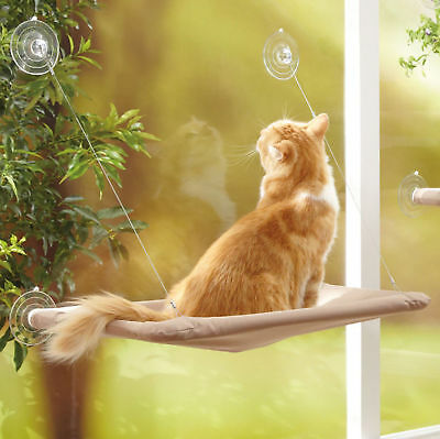 Window Mounted Cat Bed Hanging Suction Hammock Pet Sunshine Wall Perch Kitten 47