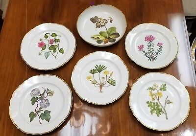 Antique Late 18th/Early 19th Century Royal Crown Derby Botanical Plates & Bowl
