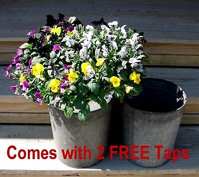 2 Vintage VERMONT Maple Sap Buckets+Taps~Country Farmhouse~Spring Flowers!