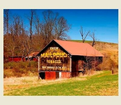 Mail Pouch Tobacco Barn PHOTO Sign, OHIO Chewing Tobacco Advertisement