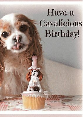 Cavalicious HappyBirthday Blenheim Cavalier King Charles Spaniel blank Note Card