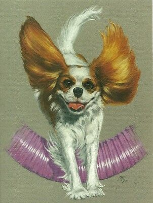 Joy of Jumping  Blenheim Cavalier King Charles Spaniel one blank note card