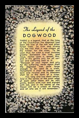 Dr Jim Stamps Us Legend Of The Dogwood Linen Topical Postcard