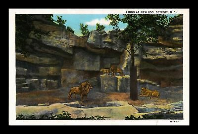 Dr Jim Stamps Us Lions At New Zoo Detroit Michigan White Border Postcard