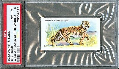 1922 Adkin & Sons The TIGER Wild Animals of the World Trade Card PSA 8