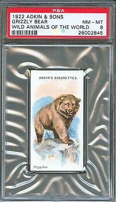 1922 Adkin & Sons GRIZZLY BEAR Wild Animals of the World Trade Card PSA 8