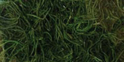 Quality Growers-Preserved Spanish Moss 108.5 Cubic Inches-Apple Green